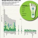 Ökológiai lábnyomunk a Földön, 2010