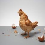 Újrahasznosítás: tojáshéjból tyúk…
