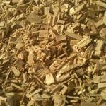 A szilárd biomassza lesz a magyar favorit?