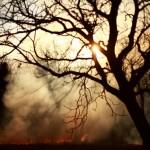 Ellenőrzések a szabadtéri tüzek kivédése érdekében