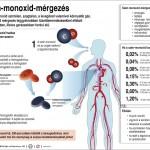Meghalt egy kislány szén-monoxid-mérgezésben a fővárosban