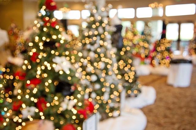 karácsonyi fényfüzér karácsonyfa