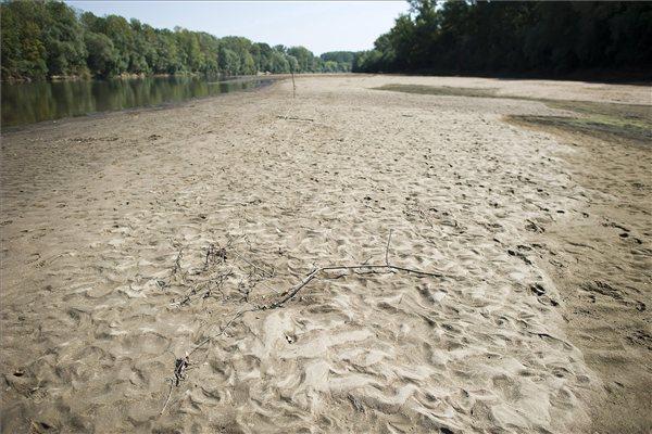 A felére zsugorodott Tisza részben kiszáradt medre Vásárosnamény és Jánd között 2012. szeptember 5-én. Az elmúlt időszakban a csapadékszegény időjárás miatt nem hullott számottevő mennyiségű eső a Tisza vízgyűjtőjének a területén, ezért a mellékfolyók sem szállítottak kellő mennyiségű vizet a folyóba. A Tiszán emiatt leállt a hajóközlekedés. MTI Fotó: Balázs Attila