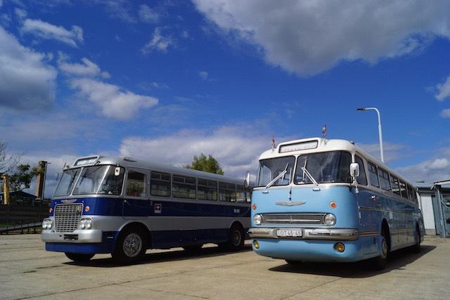 Ikarus 620 55